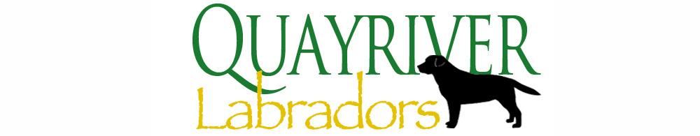 Quayriver Labradors Logo